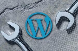 como mantener actualizada wordpress